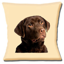 "Giovani adulti Chocolate Labrador dog HEAD foto su Crema 16 ""Cuscino Coprire"