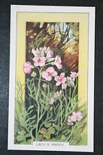 Lady's Smock   Vintage 1930's Illustrated Colour Card  VGC