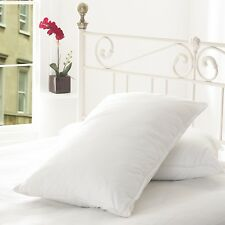 Early's of Witney Washable Hotel Quality Egyptian Cotton Pillow Pair