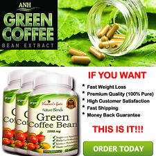 3 GREEN COFFEE BEAN EXTRACT 100% PURE WEIGHT LOSS FAT BURNER DIET DETOX ORGANIC#