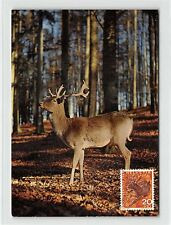 SWISS MK 1965 DEER WILD HIRSCH MAXIMUMKARTE CARTE MAXIMUM CARD MC CM d9329