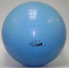 NEW 75cm Burst-resist Exercise Swiss Gym Fitness Ball