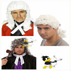 Adult Judge Barrister Wig White Grey Fancy Dress Costume Court Ringlet