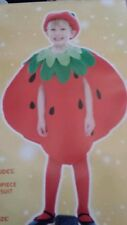 STRAWBERRY TODDLER/CHILDS/FIVE A DAY/WORLD BOOK DAY FANCY DRESS OUTFIT AGE 3