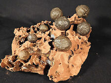 8 Moqui Marbles on a HUGE! Very Eroded Navajo Sandstone Formation! Utah 3723gr e