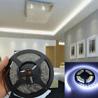 Super Bright White 5M 300LEDs 3528 Flexible Car Light Strip 12V Non-Waterproof