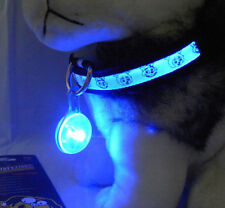Pet Led Pendant Safety Flashing Night Light For Collar Dog Cat Puppy Key Chain