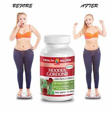 Natural Calorie Burn - HOODIA GORDONII EXTRACT 2000 - Anti Aging Supplement 1B