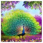 5D DIY Round Diamond Embroidery Peacock Painting Cross Stitch Home Decoration