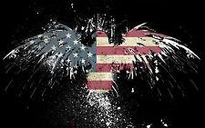 Framed print-Bandiera americana come una Falcon (PICTURE POSTER Animale Uccello ARTE USA)