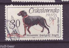 CSSR Tschechoslowakei Nr. 1542  gest. slowakischer Jagdhund