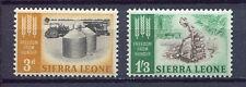27590) SIERRA LEONE 1963 MNH** Nuovi** FAO 2V