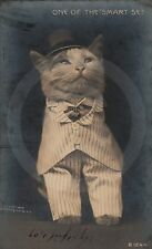 RPPC DRESSED CAT One of the Smart Set HARRY WHITTIER FREES Rotograph REAL PHOTO