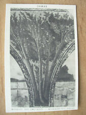 VINTAGE WWII POSTCARD MOSAIC 2 FROM OMEYADES MOSQUE DAMASCUS SYRIA 1945
