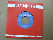 """JAMES T And The WORKERS  THAT IS ALL  GARAGE GREATS PUNK PSYCH 7"""" 45"""
