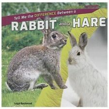 Tell Me the Difference Between a Rabbit and a Hare (How Are They Different? (Pow