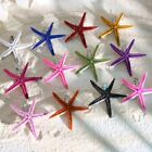 Fashion Beach Starfish Sea Star Hair Clip Hair Clip Hairpin Colorful Lady Gifts