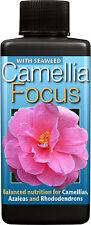 Camellia Focus Plant Food-Nutrienti-Piante Ericaceous - 100ml