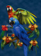 Parrot Lenticular 3D Picture Animal Poster Painting Home Decor Wall Art Decor