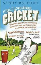 What I Love About Cricket: One Man's Vain Attempt to Explain Cricket to a Teenag