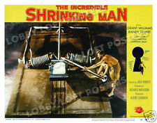 THE INCREDIBLE SHRINKING MAN LOBBY SCENE CARD # 8 POSTER 1957