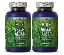 Anxiety Relief - Depression Aid - Organic Blue Green Algae - Blue Green 500 2B