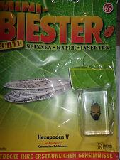 Mini-Biester/Echte Spinnen-Käfer-Insekten/69/Hachette/Schild-Wanze