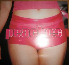 2 Vinyl LP The Teaches Of Peaches EFA kitty yo Kydoo Rave Electroclash Electro