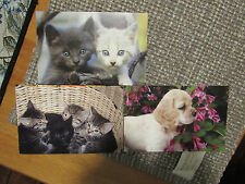 2006 Post Card Lot Cats and Dogs (4) Post Cards