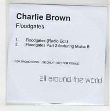 (GS505) Charlie Brown, Floodgates - DJ CD