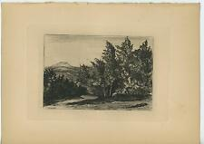 ANTIQUE FOREST NATURE COUNTRY SAND ROAD MOUNTAINS ORIGINAL ETCHING ART OLD PRINT