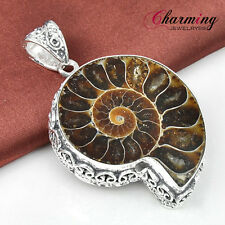 Vintage Charming Natural Ammonite Fossil Gems Silver Necklace Pendant 2 1/8""