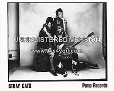 "The Stray Cats 10"" x 8"" Photograph no 10"