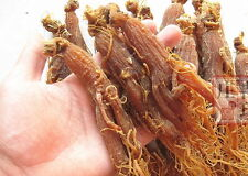 200g Top Quality  red ginseng root/Panax ginseng/ninjin/insam/Radix Ginseng tea