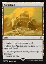 Wasteland FOIL x1 Magic the Gathering 1x Eternal Masters mtg card lot