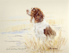 ENGLISH SPRINGER SPANIEL DOG ART LIMITED EDITION PRINT - Artists Proof # 22/85