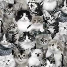 Elizabeth's Studio Cat Breeds 3809 Grey Packed Kittens  BTY Cotton Fabric