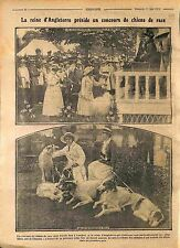 Queen Mary of Teck England Dog Breed Competition Chiens Londres London WWI 1916
