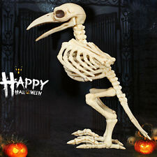 Skeleton Raven Plastic Animal Skeleton Bones for Horror Halloween Decoration JL