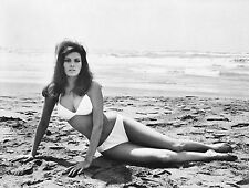 RAQUEL WELCH 8X10 GLOSSY PHOTO PICTURE IMAGE #10