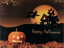 Fibre Optic Light up LED Canvas/Picture Halloween Spooky Witch Pumpkin 40x30cm