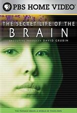 Secret Life of the Brain: The Teenage Brain-Teenag