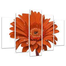 Split Canvas 5 Piece Orange Floral Multi Panel Five Part Set 5140