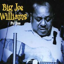 Po' Jo - Big Joe Williams (2011, CD NEUF)