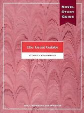 The Great Gatsby: A Novel Study Guide (Elements of Literature)