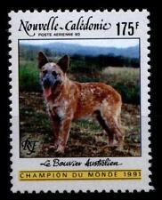 Hunde. Australischer Hirtenhund. 1W. Neukaledonien 1992