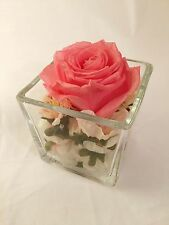 . ETERNAL preserved real PINK ROSE in glass vase