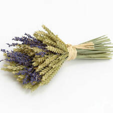 3 DRIED LAVENDER   WHEAT BUNCHES