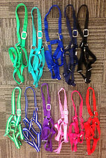Horse Full Size  Economy Turnout Halters / Lot of 4