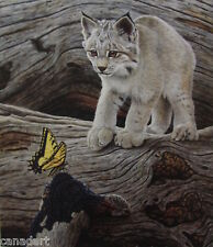 Glenn OLSON Lynx Kitten LTD art print mint with certificate COA Butterfly